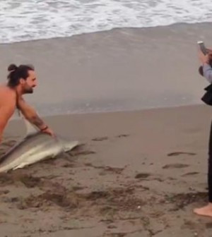 Man pulls shark out of water to pose for photos in Palm Beach