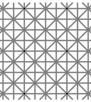 Can You See All Twelve Black Dots At Once?