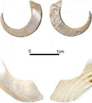 Fish hooks, dating 23000 years found in Okinawa cave [Picture]