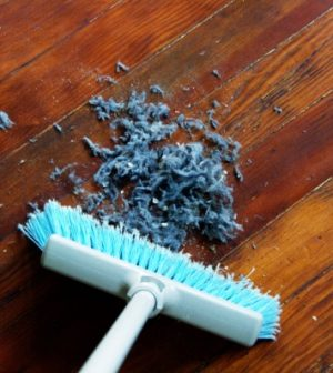 Household dust probably contains toxic chemicals, says new research