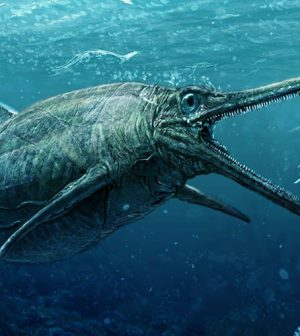 Real Loch Ness Monster Discovered in Scotland