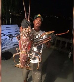 Giant lobster caught off Bermuda, possibly blown in by hurricane