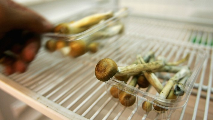 Magic mushrooms eases anxiety in cancer patients, finds new research