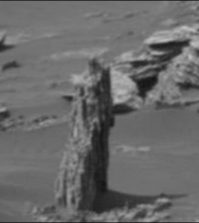 Tree stump on Mars? Existence of vegetation on Red planet possible, claims alien hunter (Video)