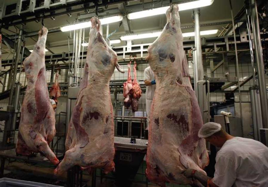 Belgium bans Halal and Kosher meat, Reports