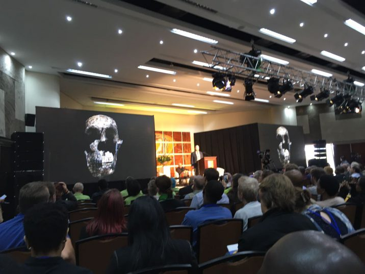 Homo naledi fossils found in South African cave, says new research