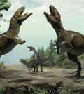 Volcanoes Triggered the Dinosaurs Age, Says new research