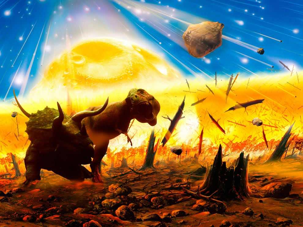 Global Mass Extinction Event Coming In 2100, Professor Says