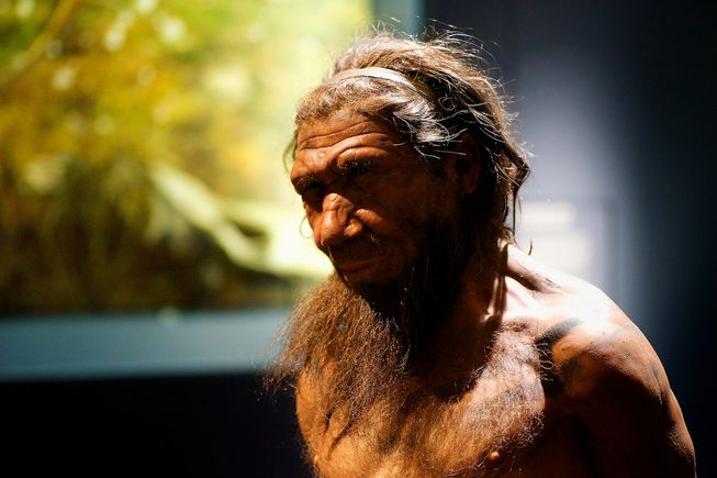 Modern-day traits are inherited from Neanderthal DNA, Researchers Say