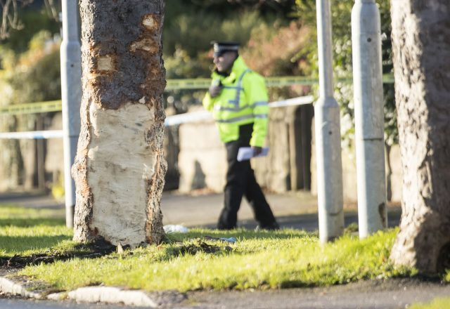 Five die, including three boys, as stolen auto hits tree in Leeds