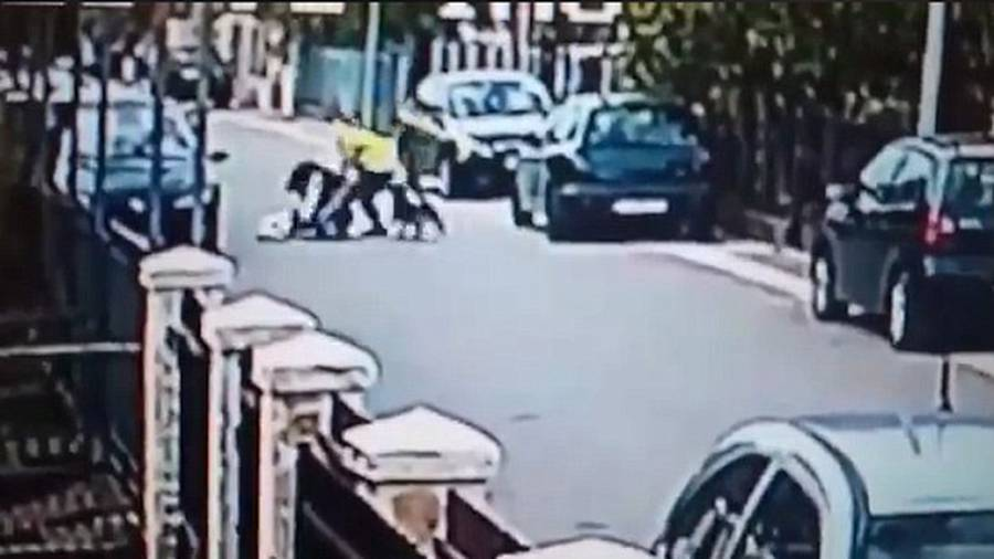Incredible moment stray dog saves woman from mugger