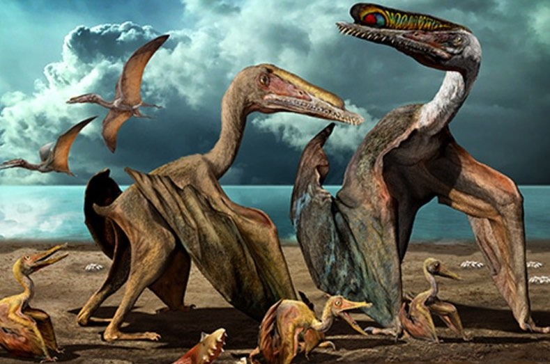 Palaeontologists discover over 200 fossilized eggs of flying reptiles in China