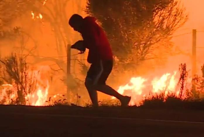 Man rescues rabbit from wildfire on side of Calif. highway (Video)