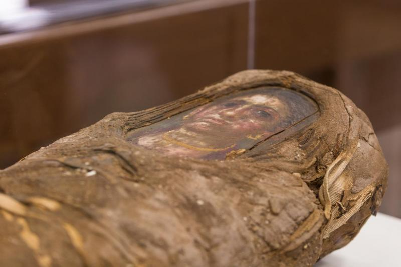 Particle Accelerator Peers Inside Ancient Egyptian Mummy