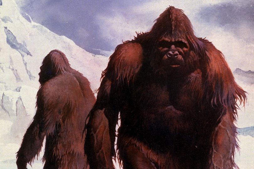Researchers make shocking Yeti discovery