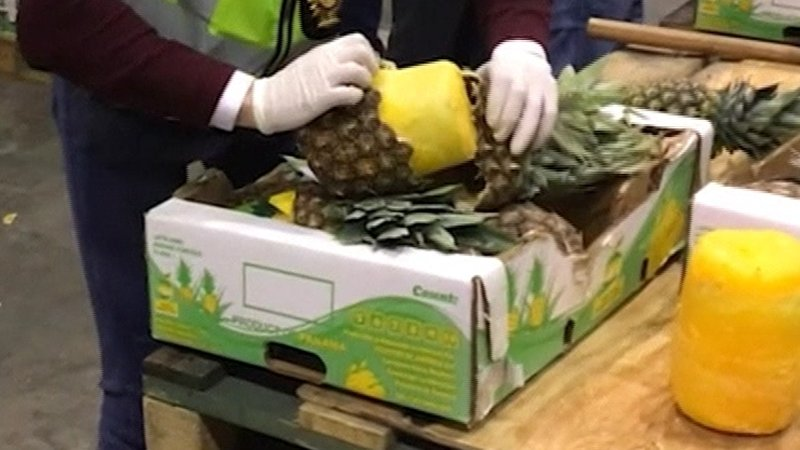 Cocaine packed inside pineapples (Video)