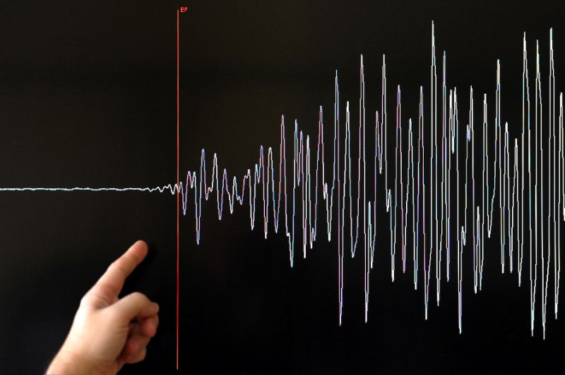 Fake Quake warning panics Japan