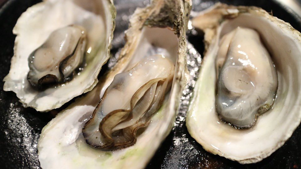 Flesh-eating bacteria kills Texas woman who ate raw oysters (Watch)