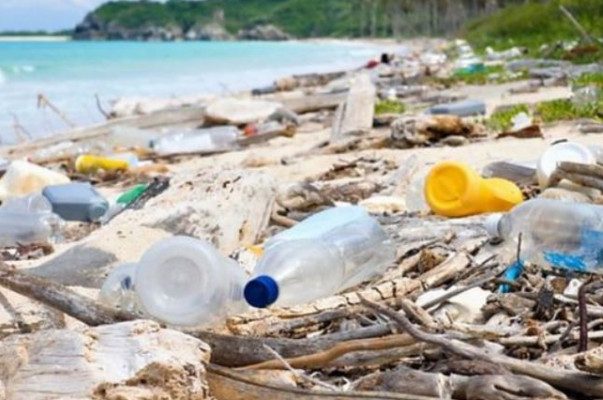 Queen Elizabeth credited with push to cut plastic waste