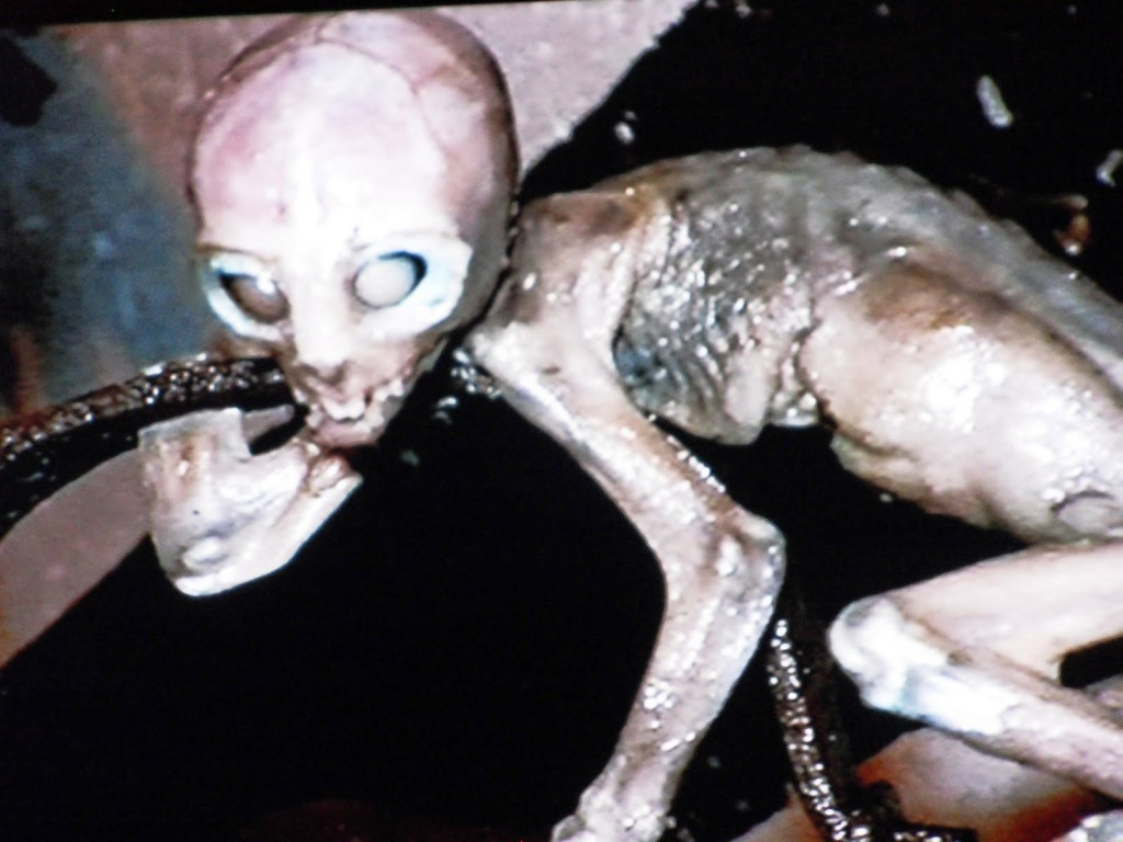 Alien skeleton mystery revealed with DNA analysis