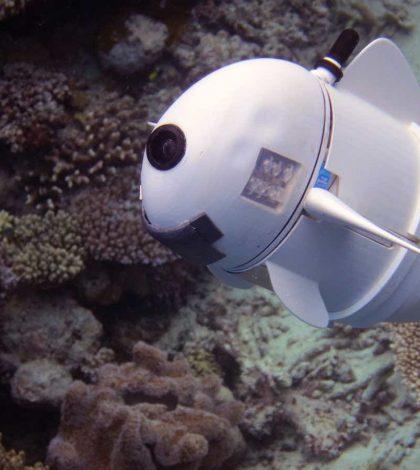 MIT's robot fish is eerily realistic (Watch)