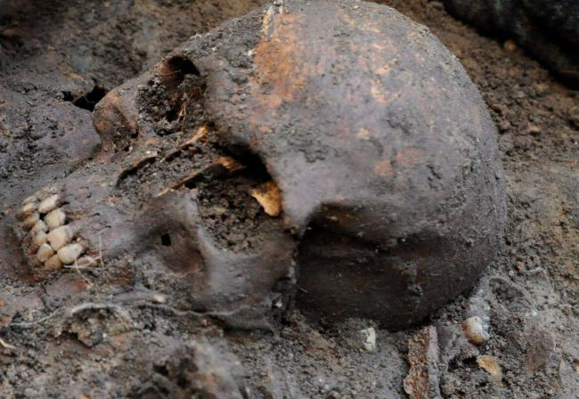Oldest human virus discovered in Bronze Age bones, says new research