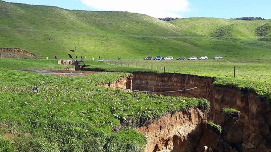 Sinkhole opens on New Zealand dairy farm (Video)