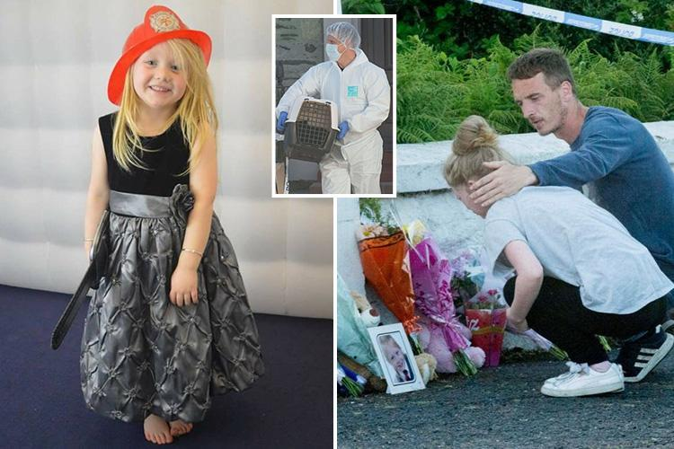 Isle of bute murder: Teen arrested after Alesha MacPhail's body found