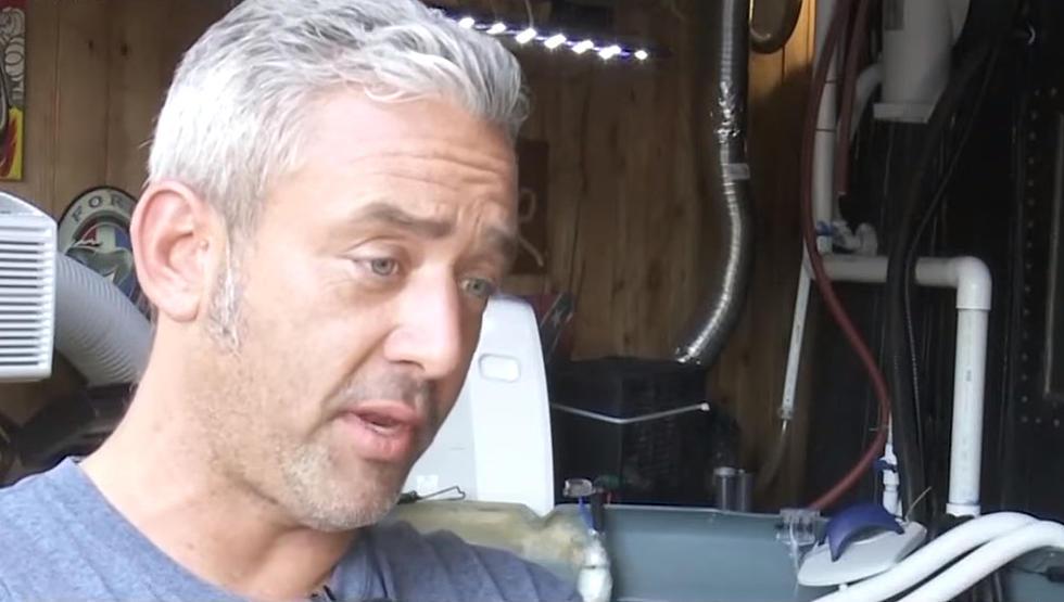 Anthony Shannon, Shark thief claims he's an animal activist