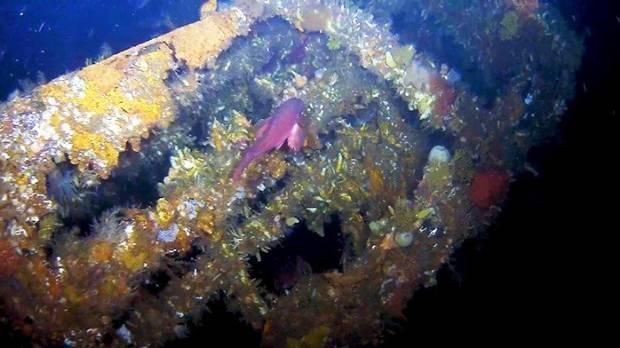 WWII Shipwreck Found In Alaska's Aleutian Islands