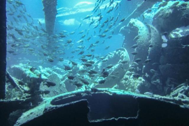 Australian Submarine Mystery solved: What happened to HMAS EA1
