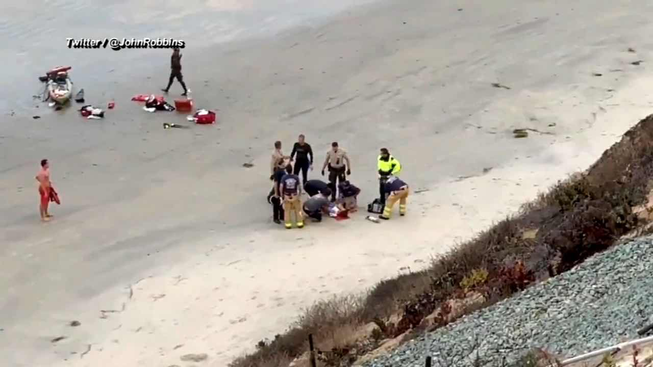 San Diego shark attack: Teen suffers traumatic injuries, Report