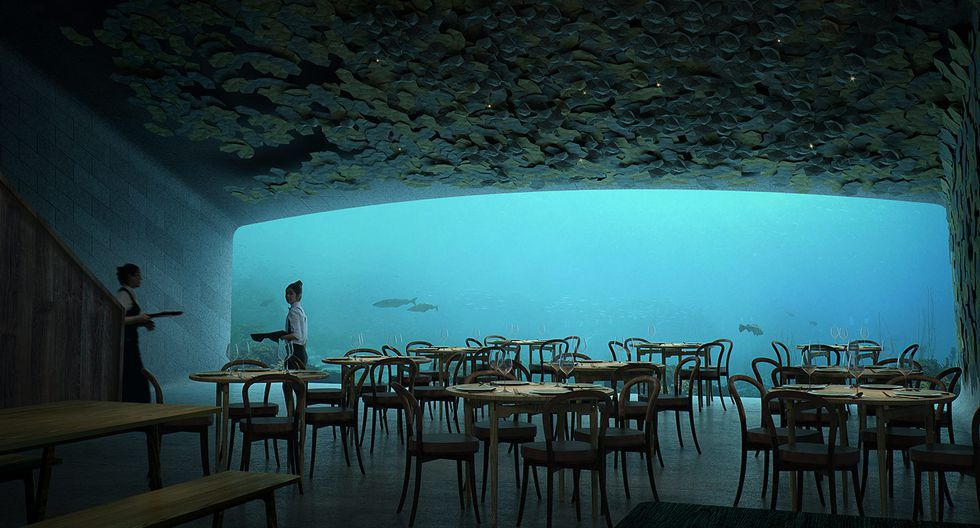 Underwater restaurant: Norway is Opening the World's Largest Resto