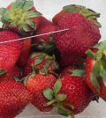 Australia strawberry arrest: Woman charged over needles