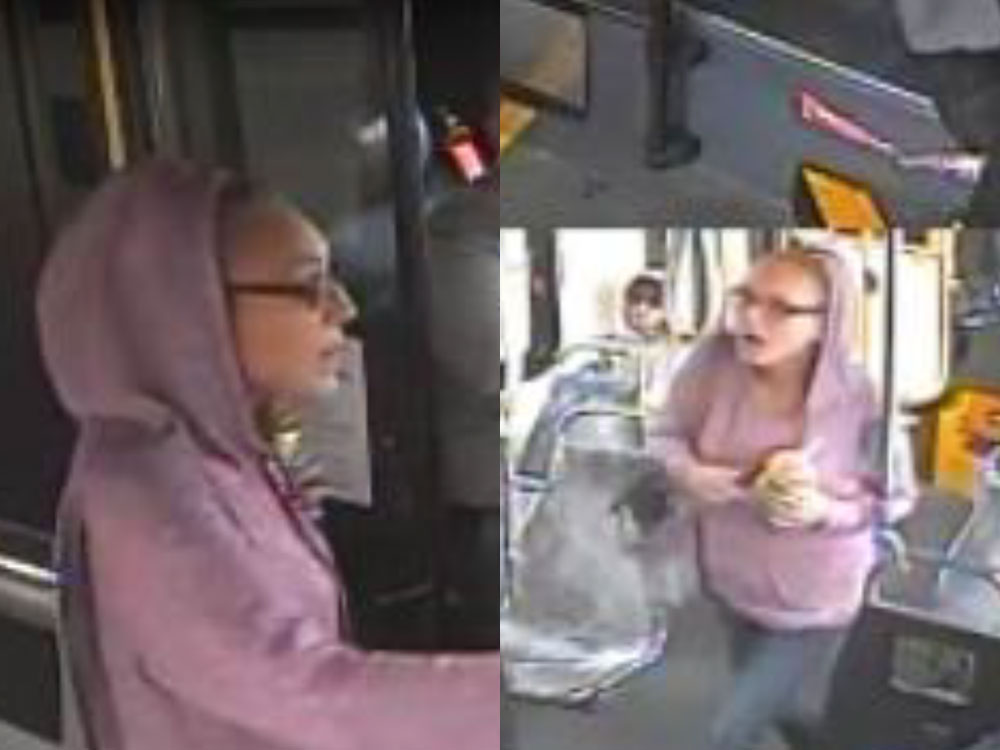 Calgary bus hate crime: police investigating alleged racial assault